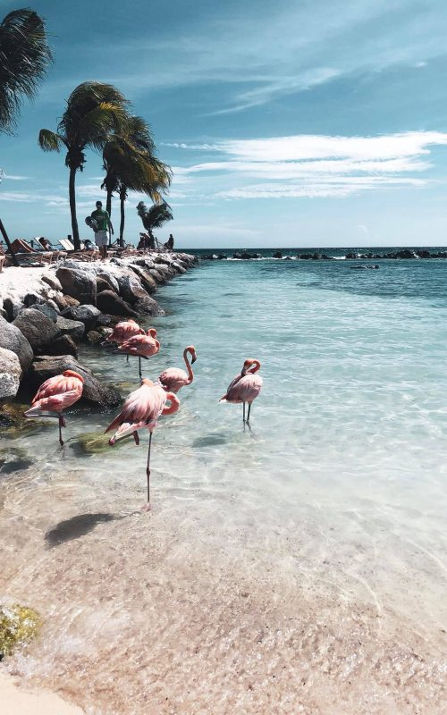 Agosto ad Aruba